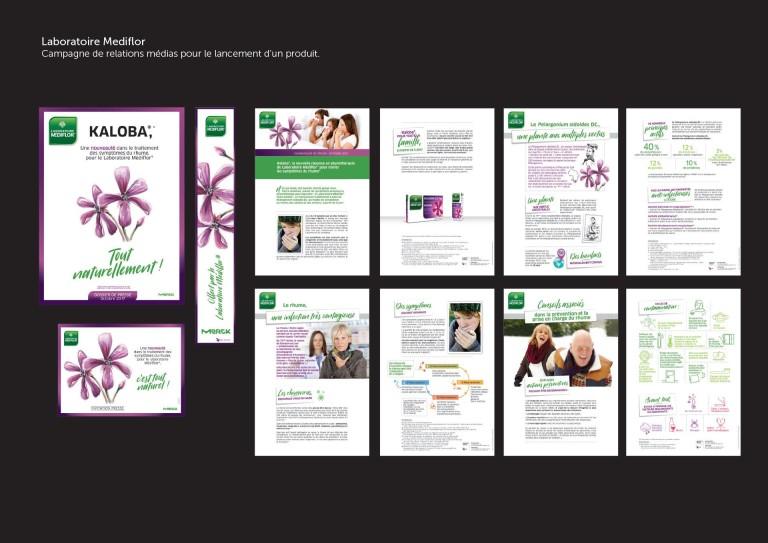 portfolio-mediflore